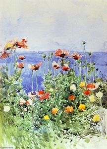 Frederick Childe Hassam - Papaveri, Isles of Shoals